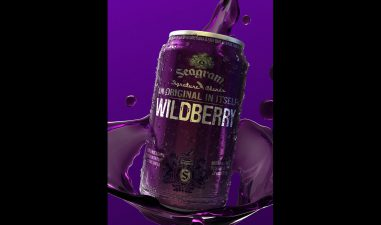 Wildberry Can 3D image